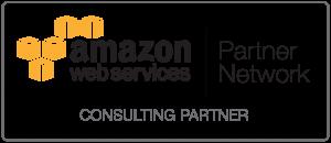 APN_Standard Consulting Partner