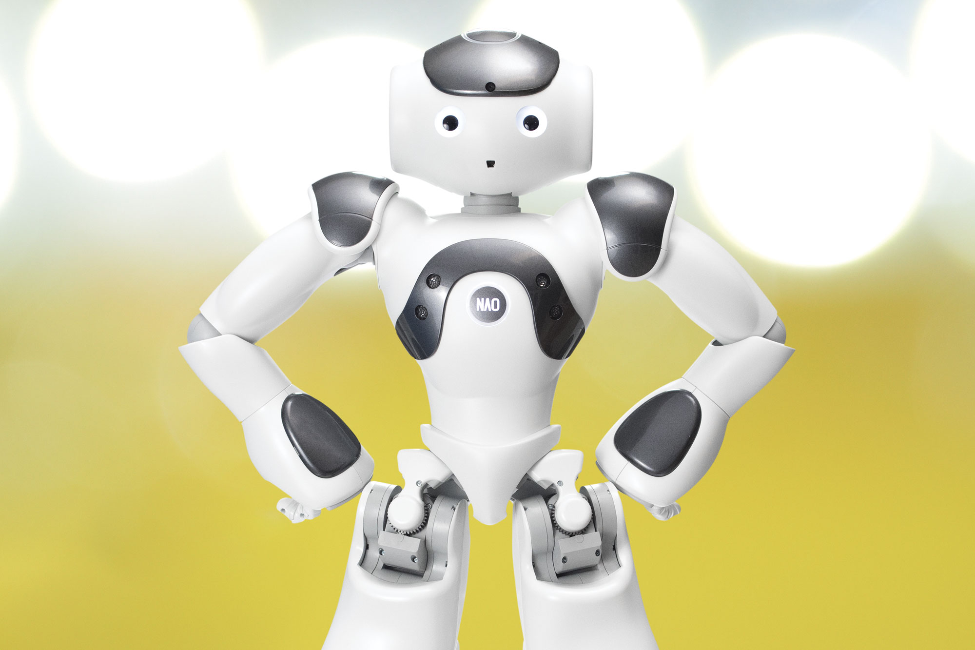 NAO ヒューマノイドロボット - JTP 日本サード・パーティ株式会社
